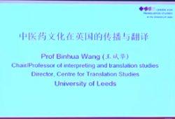 文化语境与语言翻译_第二届中国传统文化翻译与国际传播学术研讨会-TTV 译直播:语言 ...